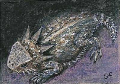 Art: Horny Toad by Artist Sara Field