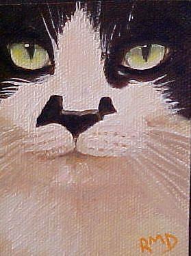 Art: My Cat Zorro #1 ACEO by Artist Rosemary Margaret Daunis