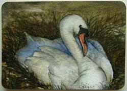 Art: Swan by Artist Deborah Leger