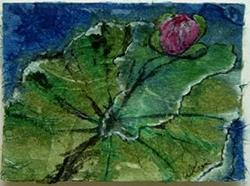 Art: Waterlily #1 by Artist Deborah Leger