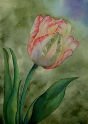 Art: WDE Tulip by Artist Deborah Leger