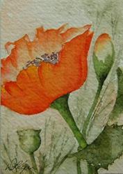 Art: Poppies, Blooms & Buds by Artist Deborah Leger