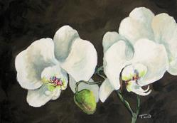 Art: My Orchid by Artist Torrie Smiley