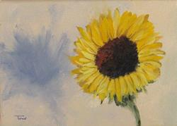 Art: Sunflower with Shadow by Artist Torrie Smiley