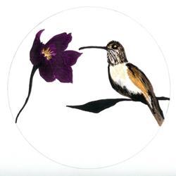 Art: Bird-Hummingbird by Artist NoRaHzArT