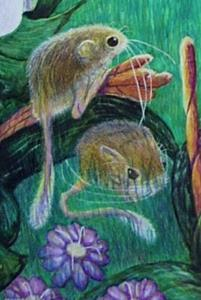Detail Image for art The lion and The Mouse-Aesop's Fable