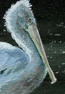Detail Image for art Pelican (Sold)