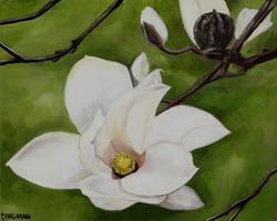 Art: Springy Magnolias Commission by Artist Aimee L. Dingman