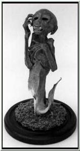 Detail Image for art The Fiji Mermaid