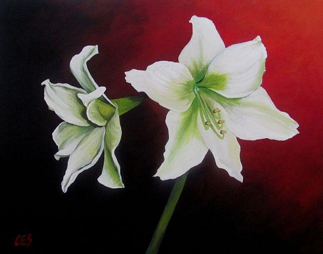Art: Amaryllis by Artist Christine E. S. Code ~CES~