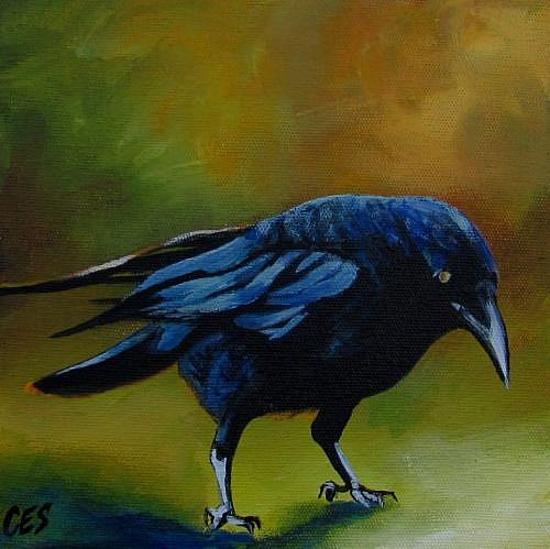 Art: Young Crow by Artist Christine E. S. Code ~CES~