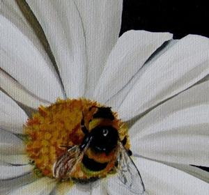 Detail Image for art Once Upon a Daisy