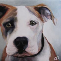 Art: Pitbull by Artist Christine E. S. Code ~CES~