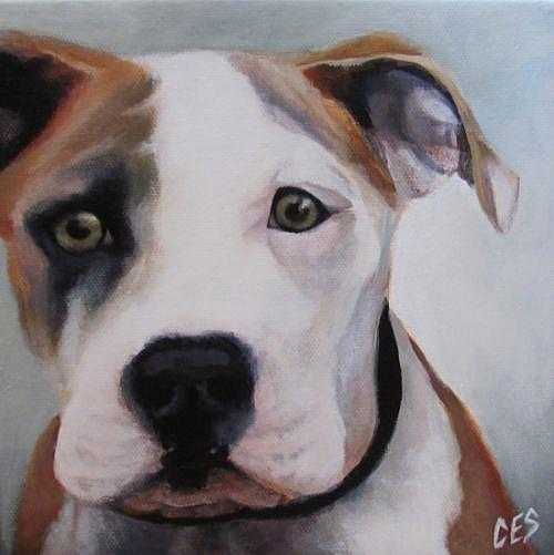 Art: Pitbull by Artist Christine E. S. Code ~CES~