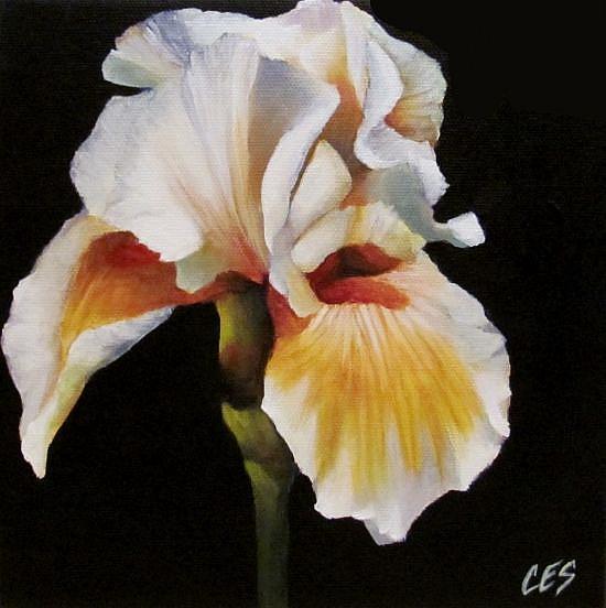 Art: Spring Iris by Artist Christine E. S. Code ~CES~