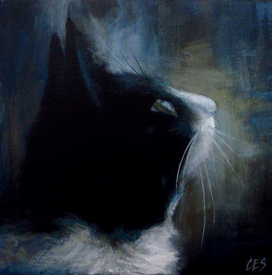 Art: Tuxedo Dreamin' by Artist Christine E. S. Code ~CES~
