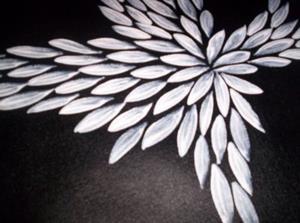 Detail Image for art Meducine Leaves (sold)