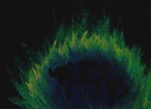 Detail Image for art Peacock Fae