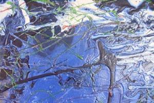 Detail Image for art INDIGO