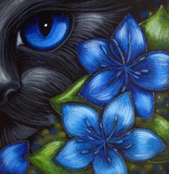 Art: BLACK CAT - FENNEL FLOWERS by Artist Cyra R. Cancel