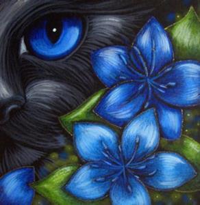 Detail Image for art BLACK CAT - FENNEL FLOWERS