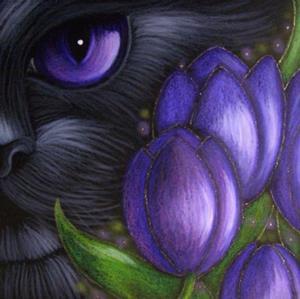 Detail Image for art BLACK CAT VIOLET TULIP FLOWERS