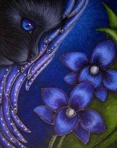 Detail Image for art BLACK ANGEL CAT  VIOLET ORCHIDS