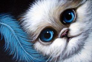 HIMALAYAN PERSIAN CAT ...