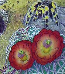 Detail Image for art The Tortoise and The Eagle-Aesop's Fable