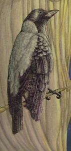 Detail Image for art Lady of the Trees