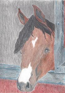 Detail Image for art CHARLIE