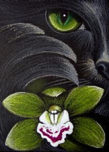 Detail Image for art *BLACK CAT MERCAT - GREEN ORCHID FLOWER
