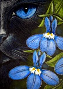 Detail Image for art BLACK CAT BEHIND THE LOBELIA FLOWERS - EBSQ SHOW