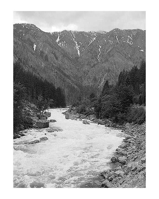 Art: Rapids in the Cascades by Artist Rebecca M Ronesi-Gutierrez