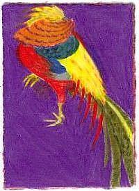 Detail Image for art Male Golden Pheasant