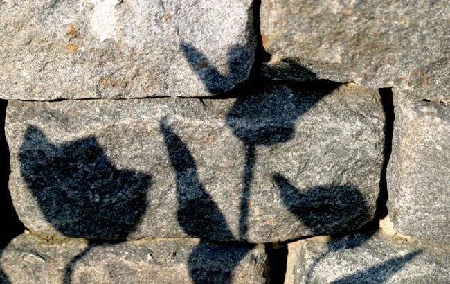 Art:  painting the wall with shadows by Artist W. Kevin Murray