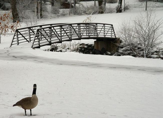 Art: Goose Bridge by Artist W. Kevin Murray