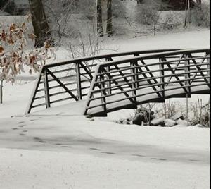 Detail Image for art Goose Bridge