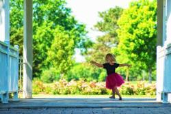 Art: Ballet in the Park by Artist Lisa Miller