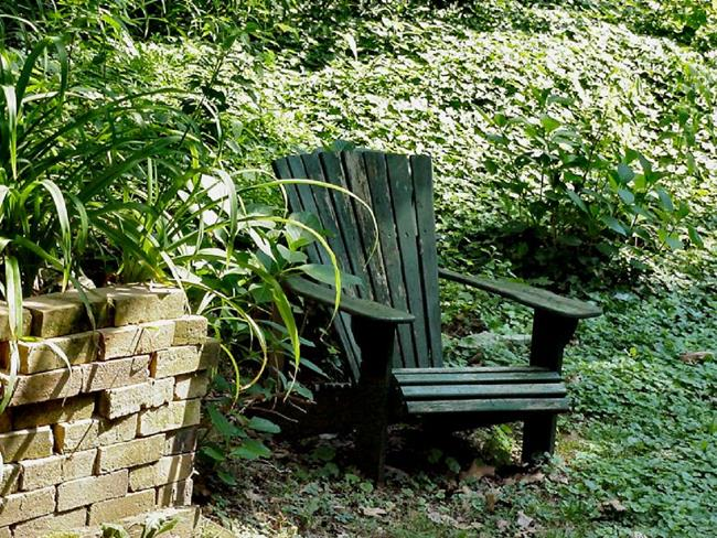 Art: Adirondack in Ivy by Artist W. Kevin Murray