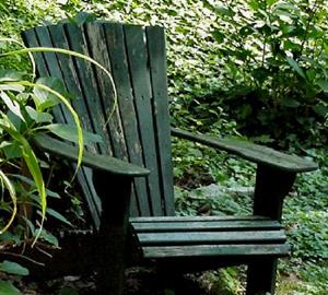 Detail Image for art Adirondack in Ivy