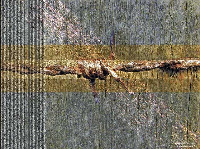 Art: barbwire by Artist Richard R. Snyder