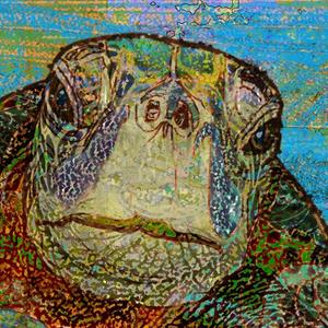 Detail Image for art Sea Turtle