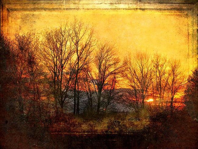 Art: At Sunset by Artist Carolyn Schiffhouer