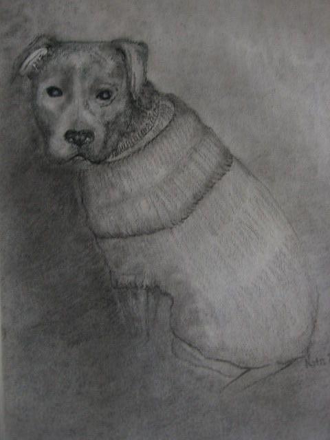 Art: Butch by Artist Nata Romeo ArtistaDonna