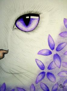 White Cat Violet Flowers By Cyra R Cancel From Gallery