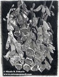 Art: Fine Foxglove by Artist Nicole B. Fekaris