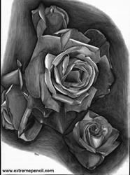 Art: Roses by Artist Nicole Fekaris