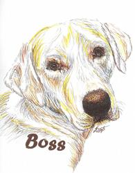 Art: Boss 002.jpg by Artist Kimberly S Knopf