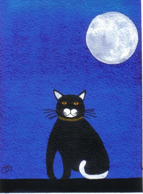 Art: CAT ON A WALL by Artist Dawn Barker
